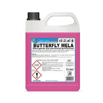 butterfly mela
